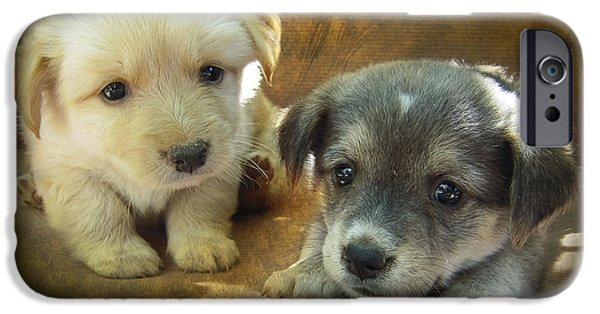 Pups Digital Art iPhone Cases - Puppies iPhone Case by Svetlana Sewell