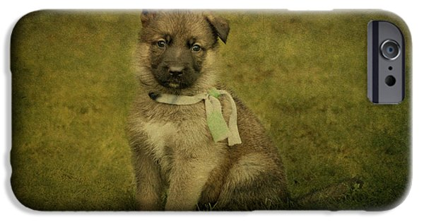 Puppy Digital iPhone Cases - Puppy Sitting iPhone Case by Sandy Keeton