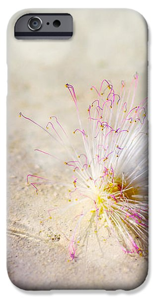 Purity iPhone Case by Jenny Rainbow