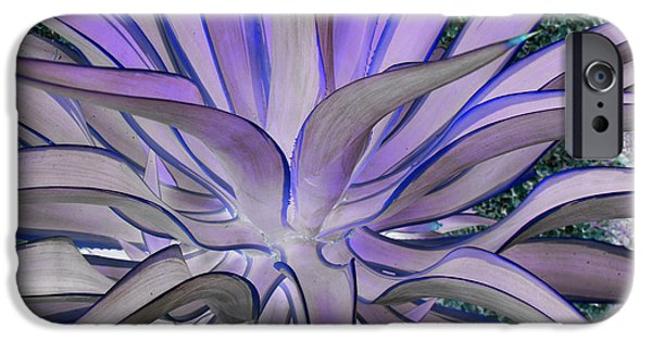 Purple Images iPhone Cases - Purple Aloe iPhone Case by Rebecca Margraf