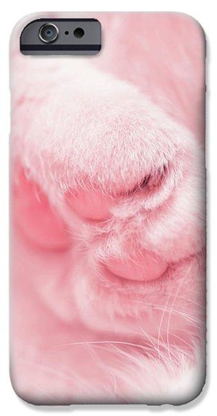 Pussy Cat iPhone Case by Mandy Tabatt
