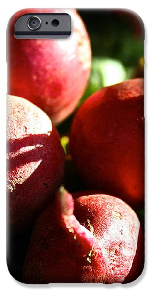 Radishes At Sunrise iPhone Case by Susan Herber