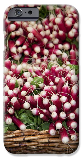 Agriculture iPhone Cases - Radishes in a basket iPhone Case by Jane Rix