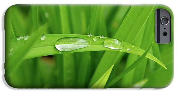Rain Drops On Grass iPhone Case by Trever Miller