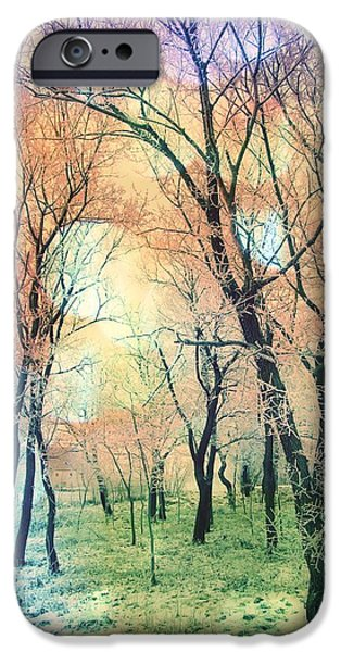 Out Of This World iPhone Cases - Rainbow Forest iPhone Case by Marianna Mills