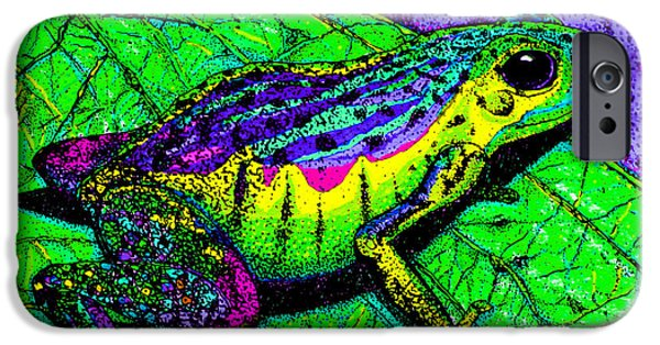 Frogs iPhone Cases - Rainbow frog 2 iPhone Case by Nick Gustafson