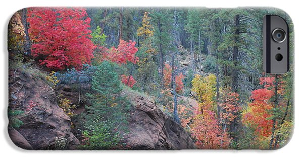 Oak Creek iPhone Cases - Rainbow of the Season iPhone Case by Heather Kirk