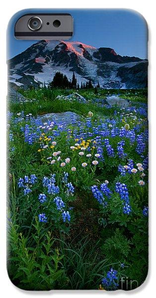 Rainier Wildflower Dawn iPhone Case by Mike  Dawson