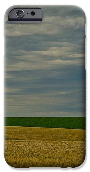 Rainy Day Blues iPhone Case by Dan Mihai
