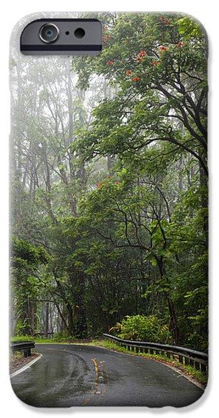 Asphalt iPhone Cases - Rainy Road to Hana iPhone Case by Jenna Szerlag