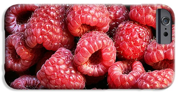 Raspberry iPhone Cases - Raspberries  iPhone Case by JC Findley