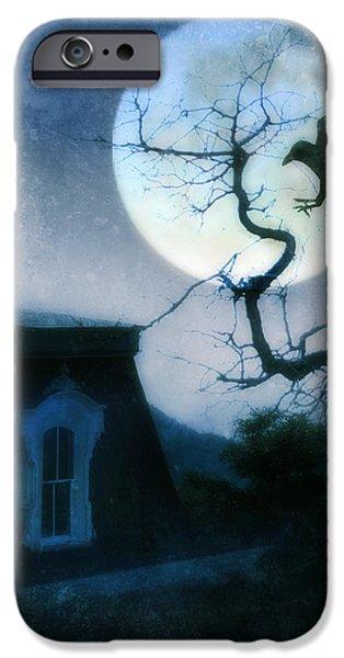 Raven Landing on Branch in Moonlight iPhone Case by Jill Battaglia