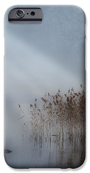 rays of light iPhone Case by Joana Kruse