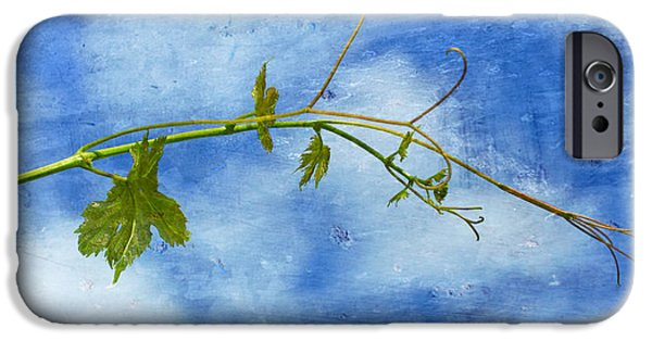 Vineyard Photograph iPhone Cases - Reaching Out iPhone Case by Heidi Smith
