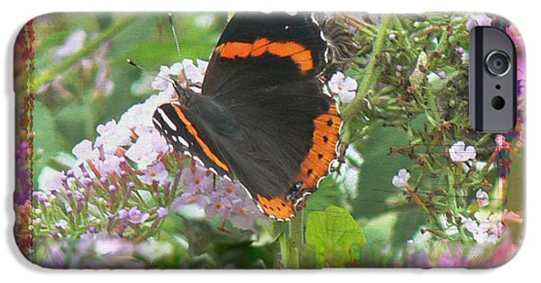 Admiral Digital iPhone Cases - Red Admiral iPhone Case by EricaMaxine  Price