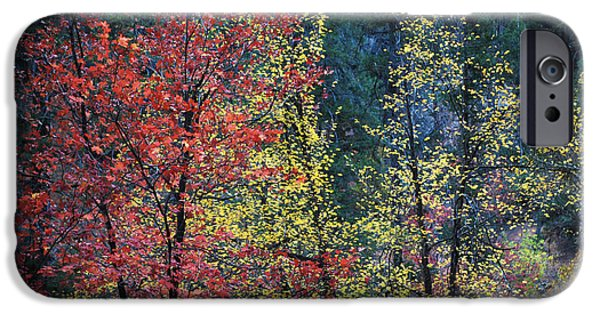 West Fork iPhone Cases - Red and Yellow Leaves Abstract Horizontal Number 1 iPhone Case by Heather Kirk