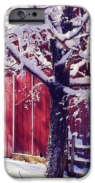 Red Barn in the Winter Connecticut USA iPhone Case by Sabine Jacobs