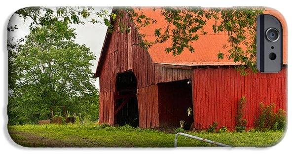 Tennessee Hay Bales iPhone Cases - Red Barn with Orange Roof 1 iPhone Case by Douglas Barnett