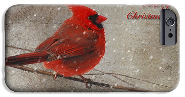 Lois Bryan iPhone Cases - Red Bird In Snow Christmas Card iPhone Case by Lois Bryan