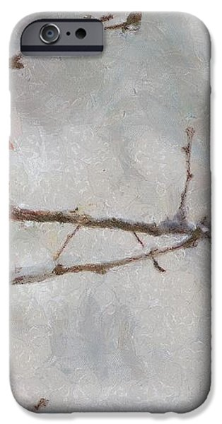 Red Bird of Winter iPhone Case by Jeff Kolker