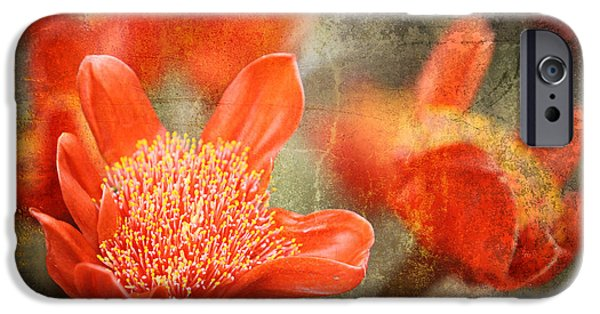 Botanical Photographs iPhone Cases - Red Flowers iPhone Case by Larry Marshall