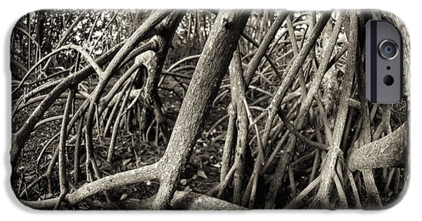 Red Mangroves iPhone Cases - Red Mangrove iPhone Case by Patrick M Lynch