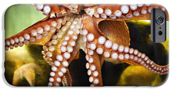 Aquarium Fish iPhone Cases - Red Octopus iPhone Case by Marilyn Hunt