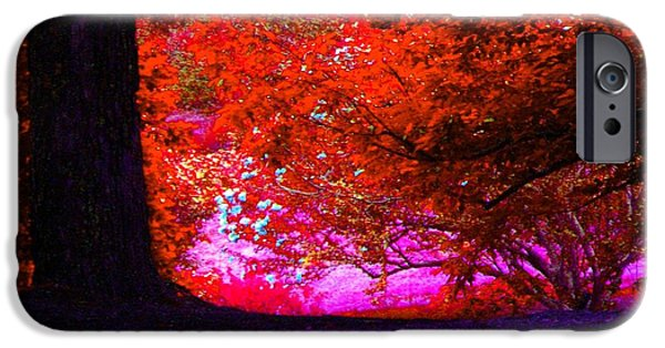 Creek iPhone Cases - Red Orange Leaves With A Touch Of Blue iPhone Case by Annie Zeno