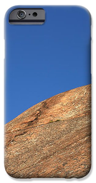 Red Pine Tree iPhone Case by Ted Kinsman