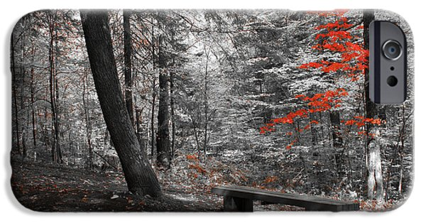 Aimelle Photographs iPhone Cases - Reds in the Woods iPhone Case by Aimelle