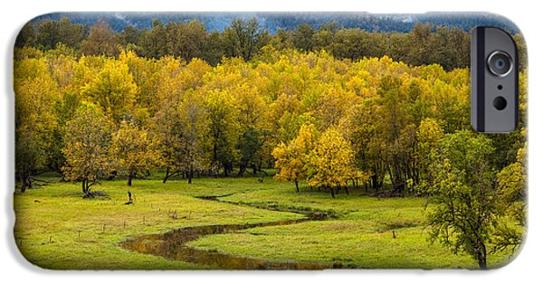 Creek iPhone Cases - Reflected Seasons iPhone Case by Mike Reid