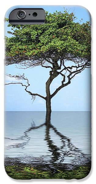 Reflecting iPhone Case by Cheryl Young