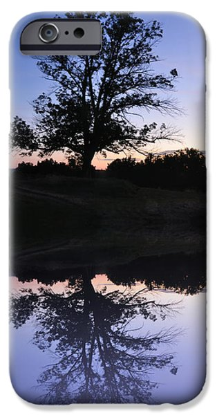Reflecting Trees iPhone Cases - Reflecting Tree iPhone Case by Bill Cannon