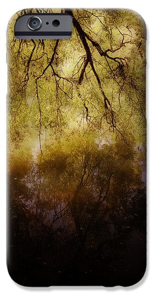 reflection iPhone Case by Joana Kruse