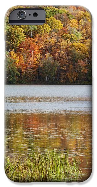 Design Pics - iPhone Cases - Reflection Of Autumn Colors In A Lake iPhone Case by Susan Dykstra