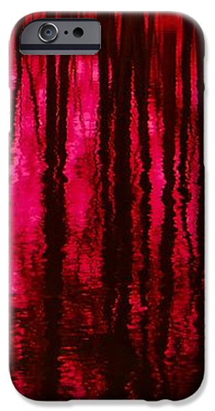 Reflections iPhone Case by David Lane