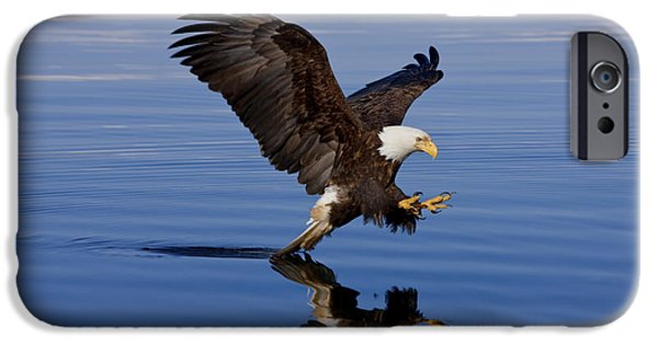 Strong America iPhone Cases - Reflections of Eagle iPhone Case by John Hyde - Printscapes