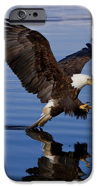 Reflections of Eagle iPhone Case by John Hyde - Printscapes