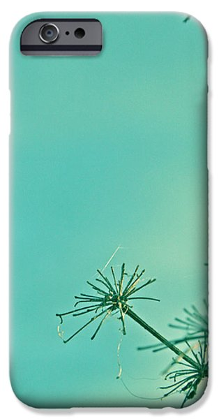 Regeneration iPhone Case by Nomad Art And  Design