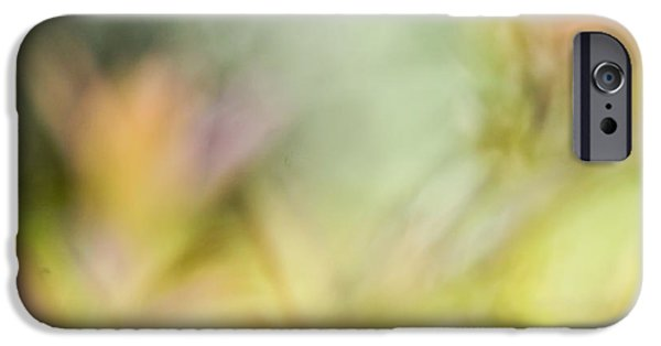 Nature Abstract iPhone Cases - Renewal Of Spring  iPhone Case by Heidi Smith