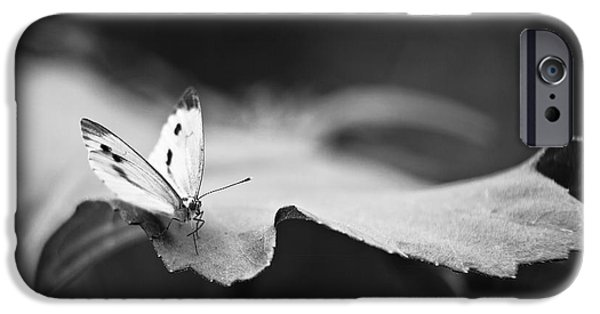 Buterfly iPhone Cases - Resting iPhone Case by Gabriela Insuratelu