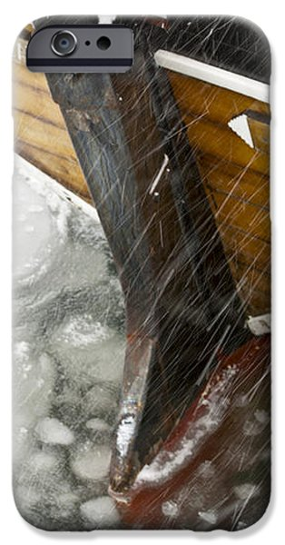 Resting in Ice iPhone Case by Heiko Koehrer-Wagner