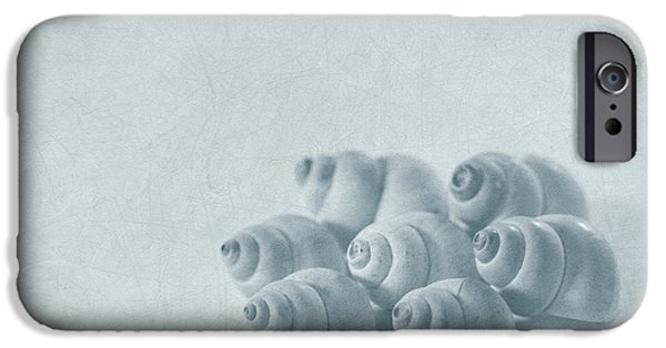Shell Spiral iPhone Cases - Return To Innocence iPhone Case by Evelina Kremsdorf