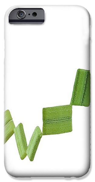 Rhabdonema Marine Diatom, Sem iPhone Case by Steve Gschmeissner