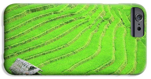 Terraces iPhone Cases - Rice field terraces iPhone Case by MotHaiBaPhoto Prints
