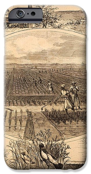 RICE PLANTATION, 1866 iPhone Case by Granger