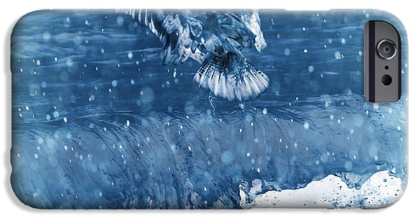Seagull iPhone Cases - Riding The Wave The Gull iPhone Case by Debra  Miller