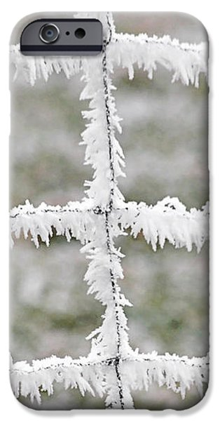 Rime covered fence iPhone Case by Christine Till