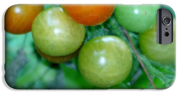 Fruit On The Vine Print iPhone Cases - Ripen On The Vine iPhone Case by Barbara S Nickerson