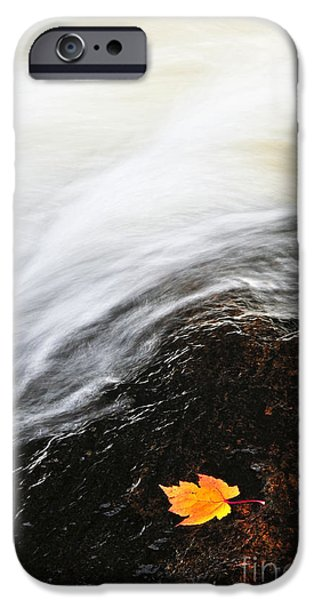 River iPhone Cases - River in fall iPhone Case by Elena Elisseeva